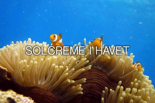 Solcreme i havet