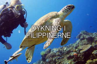 DYKNING-I-FILIPPINERNE