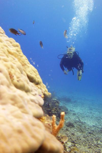 solcreme i havet dykning
